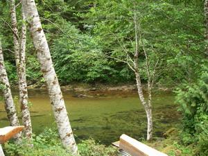 river-scenery-2