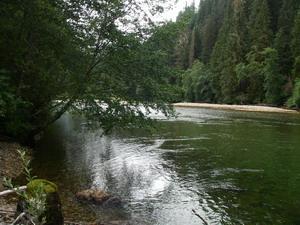 river-scenery-5