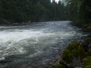 Trapper Rick's river