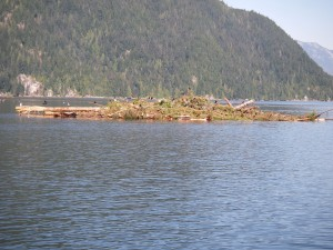 Knight Inlet Slide 2013 2