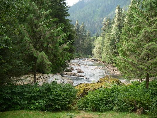 Trapper Rick's scenery