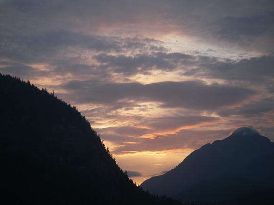 Grizzly Bear  Lodge sunrise