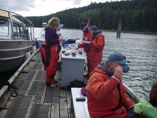 dock lunch